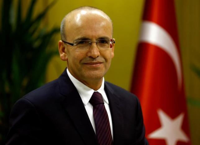 Turkish Deputy Prime Minister Mehmet Simsek poses during an interview with Reuters in Ankara, Turkey, December 23, 2015. REUTERS/Umit Bektas/File Photo