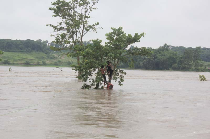 Flood victims take refuge on a tree as an army officer holds a rope to rescue them in Jhapa, Nepal, on July 24, 2016. Photo: Reuters