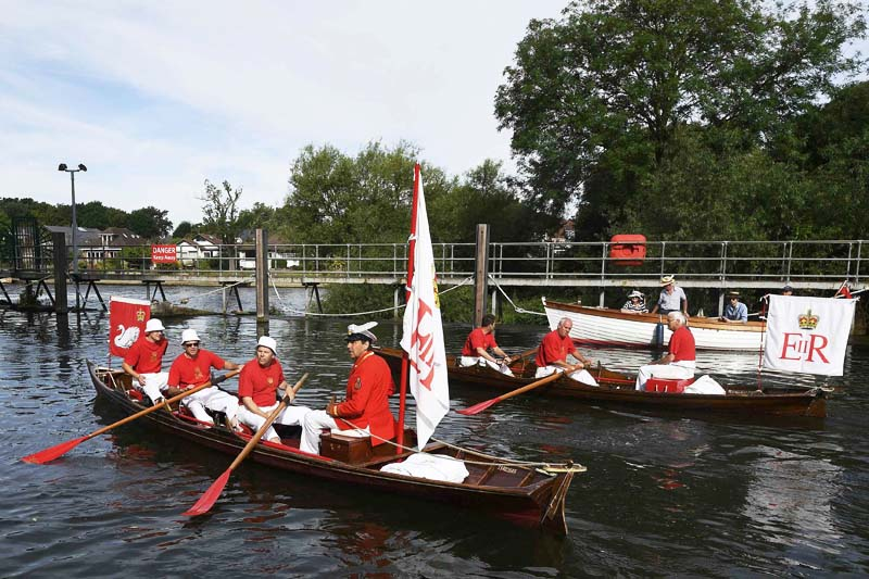 Boat crews set off for Swan Upping, the annual census of the swan population on the River Thames, in a week long exercise where unmarked mute swans are now counted  - rather than eaten - in a tradition exercised by the British Crown for nearly 900 years,  at Sunbury, Southern England on July 18, 2016. Photo: Reuters