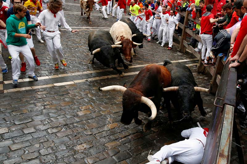 A runner falls in the path of Nunez del Cuvillo bulls during the seventh running of the bulls at the San Fermin festival in Pamplona, northern Spain on July 13, 2016. Photo: Reuters
