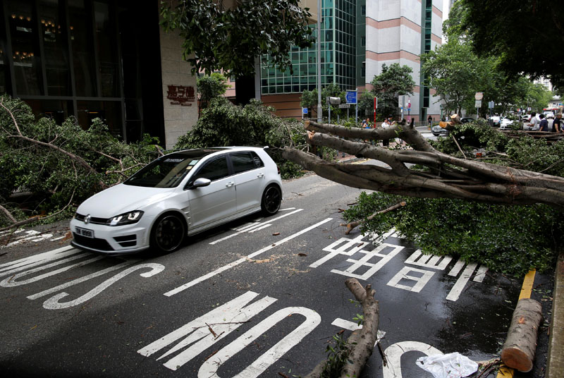 A vehicle drives among trees uprooted by strong winds from Typhoon Nida in Hong Kong, China ON Tuesday, August 2, 2016.Photo: REUTERS