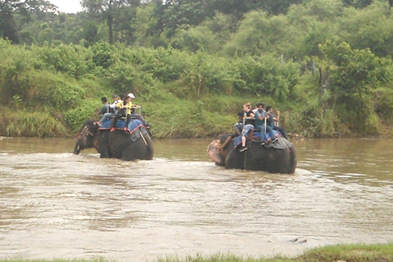 Tourists cross the Rapti River riding on elephants in Ratnanagar of Chitwan district, on Saturday, August 6, 2016. Photo: RSS