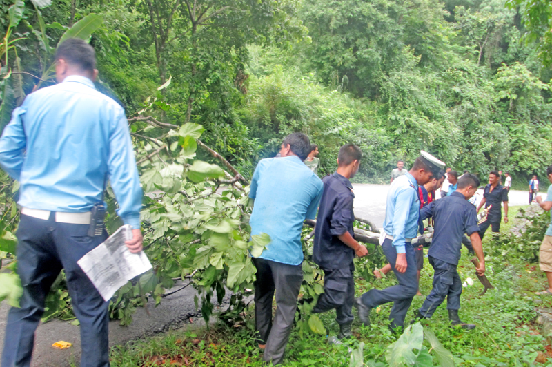 Security personnel and locals cutting down branches of trees and bushes on both sides of the road to prevent possible accidents along Prithivi Highway in Kamalbari of Ghanshikuwa VDC, Tanahun, on Thursday, September 1, 2016. Photo: THT