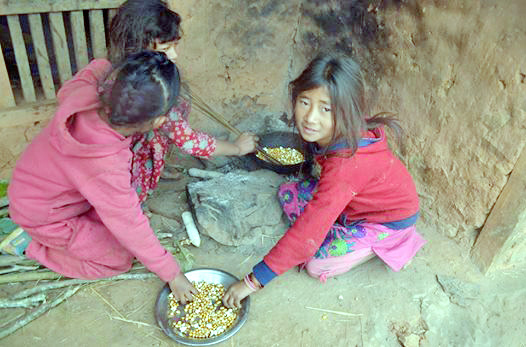 Chepang kids eating corn at Brushbrang in Dhading on Thursday. The children were compelled to eat corn due to lack of other foods. Photo: THT      nn