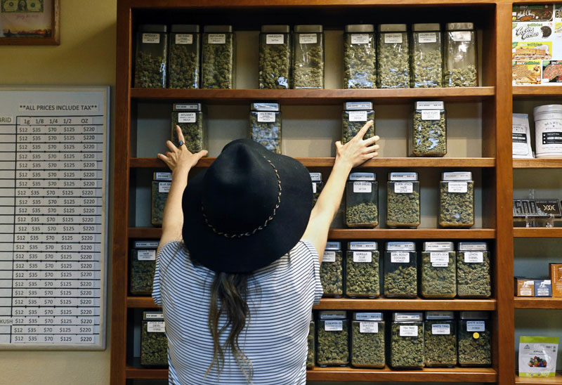 FILE - An employee arranges glass display containers of marijuana on shelves at a retail and medical cannabis dispensary in Boulder, Colorado, on Thursday, August 11, 2016. Photo: AP