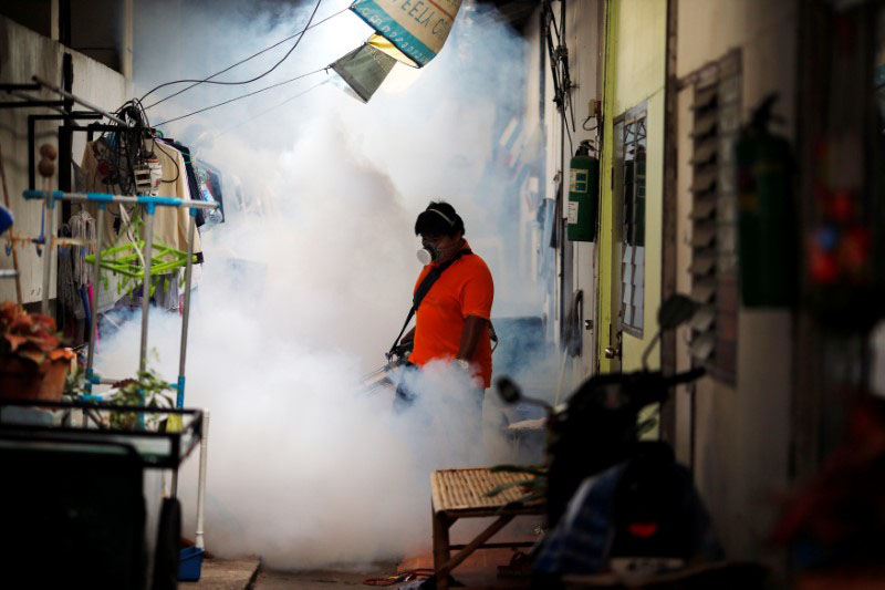 A city worker fumigates the area to control the spread of mosquitoes at a university in Bangkok, Thailand, on September 13, 2016. Photo: Reuters