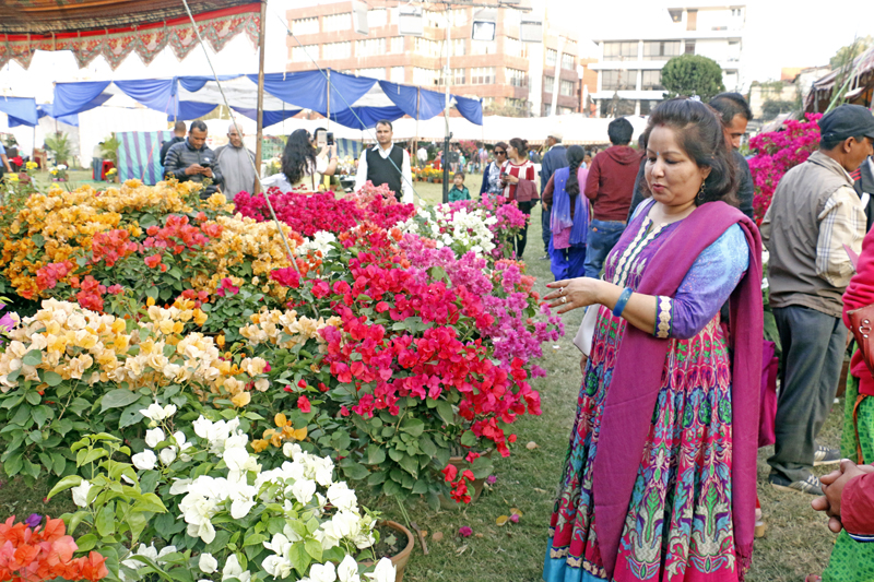 A woman observes flowers put on display at the 10th Godawari Festival at the Jawalakhel of Lalitpur district, on Wednesday, October 26, 2016. Photo: RSS