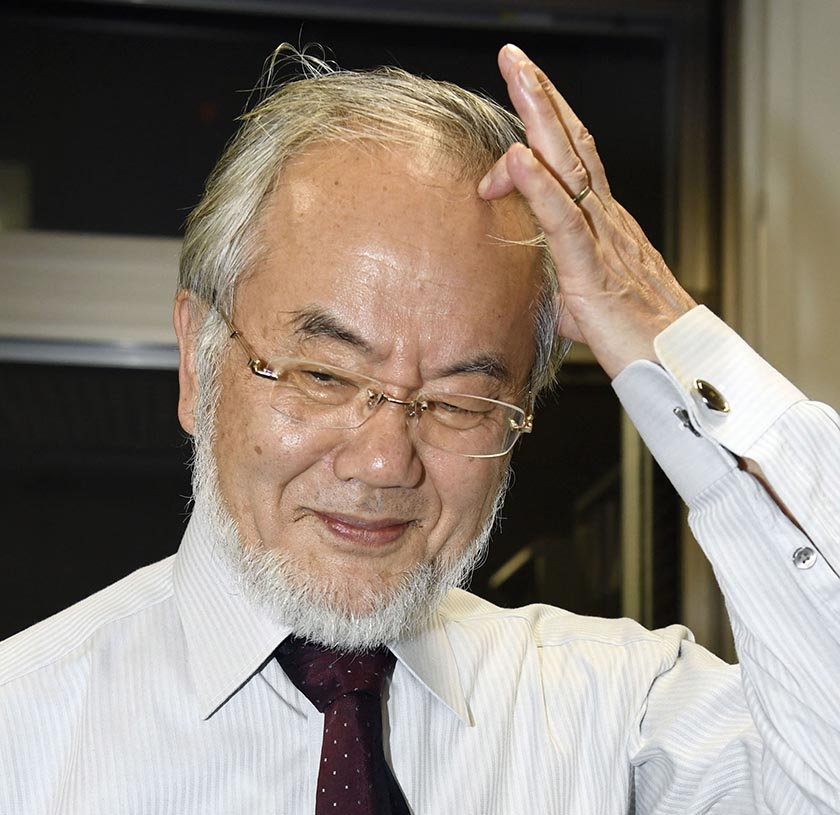 Japanese scientist Yoshinori Ohsumi scratches his head as he reacts photographers' request to smile following a news that he won this year's Nobel Prize in medicine at the Tokyo Institute of Technology campus in Yokohama, south of Tokyo, Monday, Oct. 3, 2016. Junko Ozaki/Kyodo News via AP