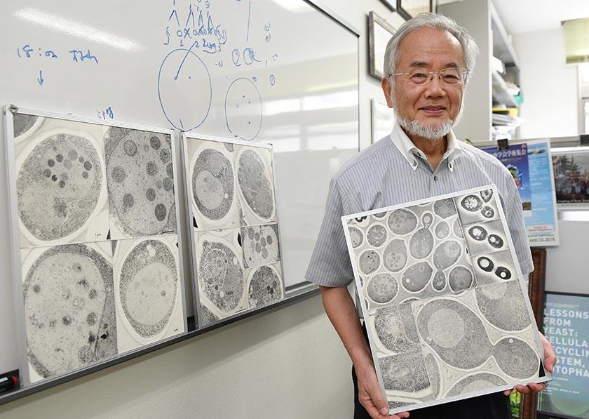 In this July, 2016 photo, Japanese scientist Yoshinori Ohsumi smiles at the Tokyo Institute of Technology campus in Yokohama, south of Tokyo. Photo: Akiko Matsushita/Kyodo News via AP