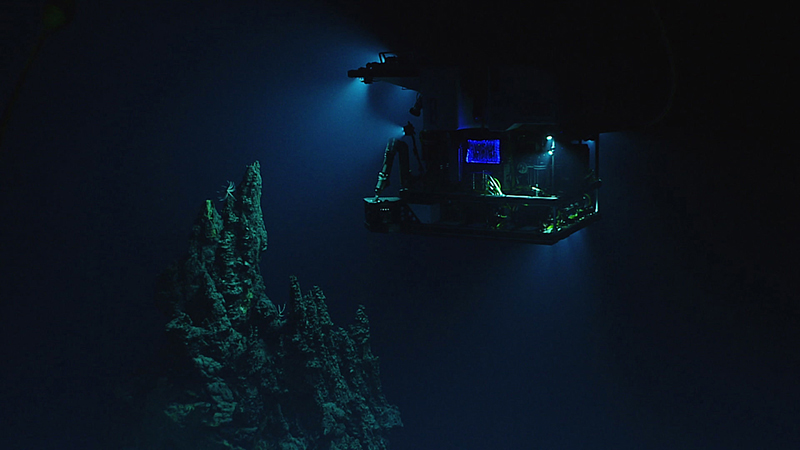 The remotely operated vehicle Deep Discoverer surveying a 14-metre (46-foot) hydrothermal chimney during a deepwater exploration of the Marianas Trench Marine National Monument area in the Pacific Ocean near Guam and Saipan, on April 28, 2016. Photo: NOAA Office of Ocean Exploration and Research via AP