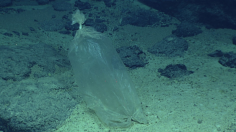 A plastic ice bag found at the Enigma Seamount, during a deepwater exploration of the Marianas Trench Marine National Monument area in the Pacific Ocean near Guam and Saipan, on April 22, 2016. Photo: NOAA Office of Ocean Exploration and Research via AP