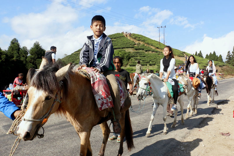 Internal tourists enjoy horse ride in chiyabari of Illam district on Monday, November 21, 2016. It costs Rs 1oo for ten minutes of horse ride. Photo: RSS