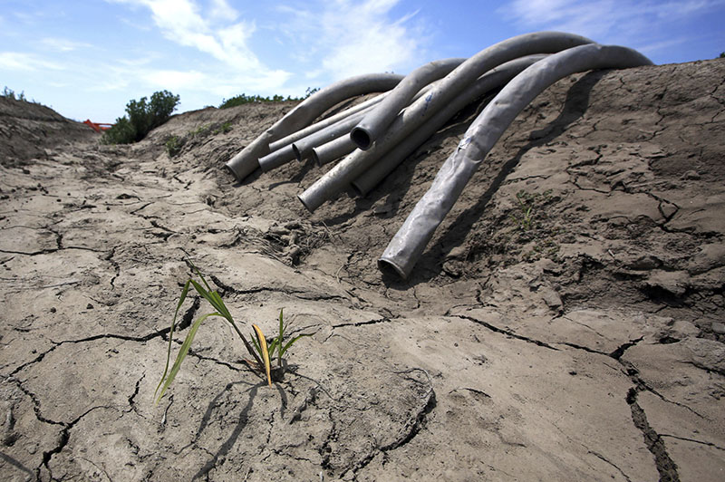 FILE - Irrigation pipes sit along a dry irrigation canal on a field near Stockton, California, on May 18, 2015. Photo: AP
