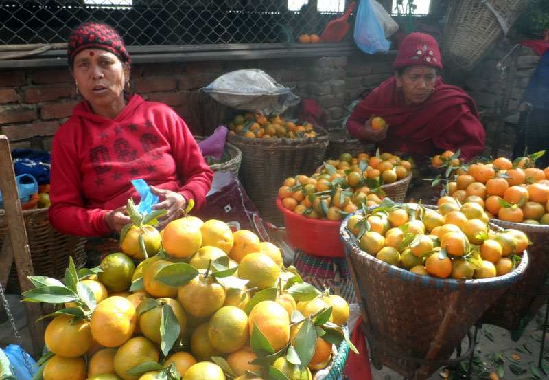 Orange vendors are seen waiting for customers at Manakamana in Gorkha district on Monday, November 28, 2016. Photo: RSS