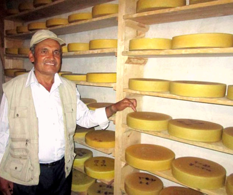 The stacks of Cheese produced by the Himalayan Cheese Industry are ready for sale on Tuesday, November 22, 2016. Recently, the Himalayan cheese is getting popular among customers. Photo: RSS