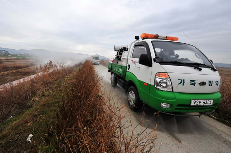 South Korean health officials disinfect a stream which migratory birds stay in winter temporarily, to prevent spread of bird flu in Pohang, South Korea, on Monday, December 19, 2016. Photo: Reuters
