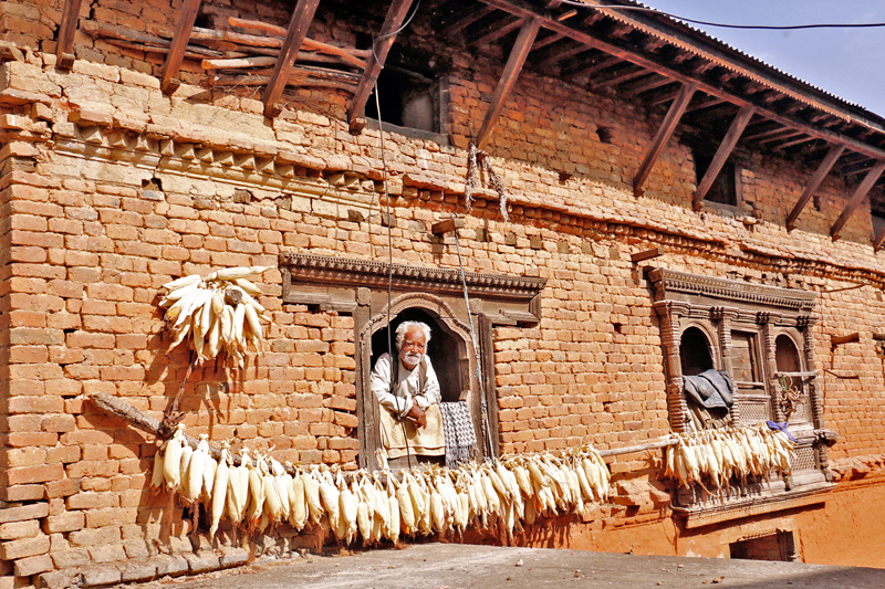 An elderly man views through a window of a traditional Newari building in Chitlang of Makawanpur district, on Wednesday, December 7, 2016. Such maize cobs and traditional buildings are rare in sight these days. Photo: RSS