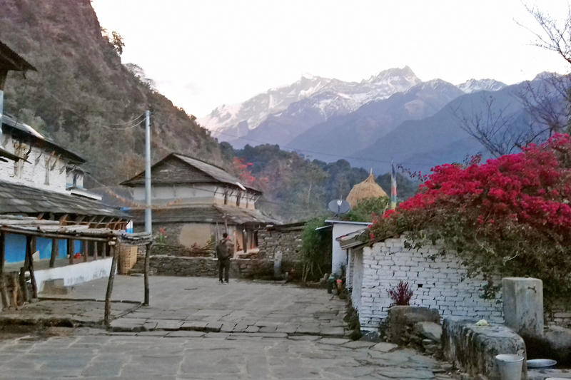 A panoramic view of Annapurna Mountain Range as seen from Mirsa village in Kaski district, on Thursday, January 19, 2017. Photo: RSS