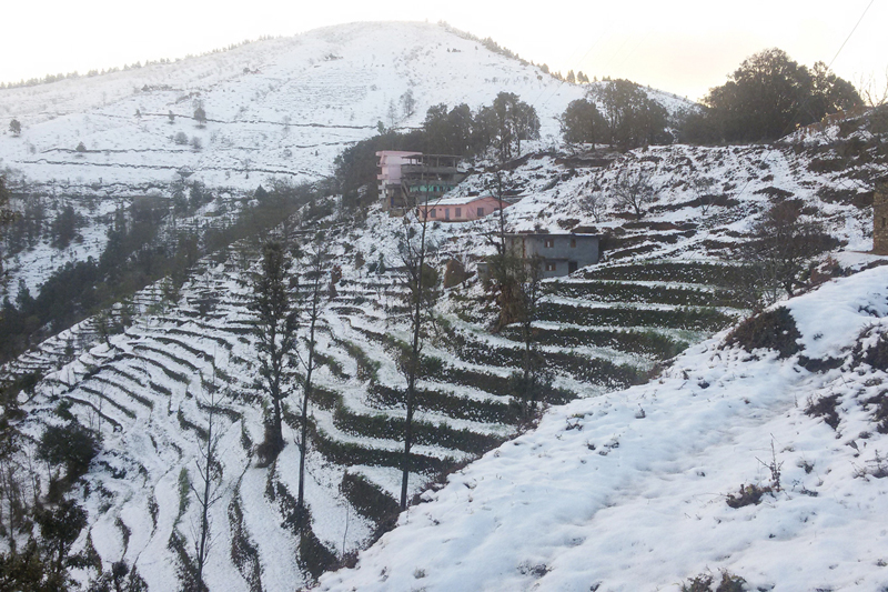 Snow covers Musyachaur village of Baitadi district, on Sunday, January 8, 2017. Photo: RSS