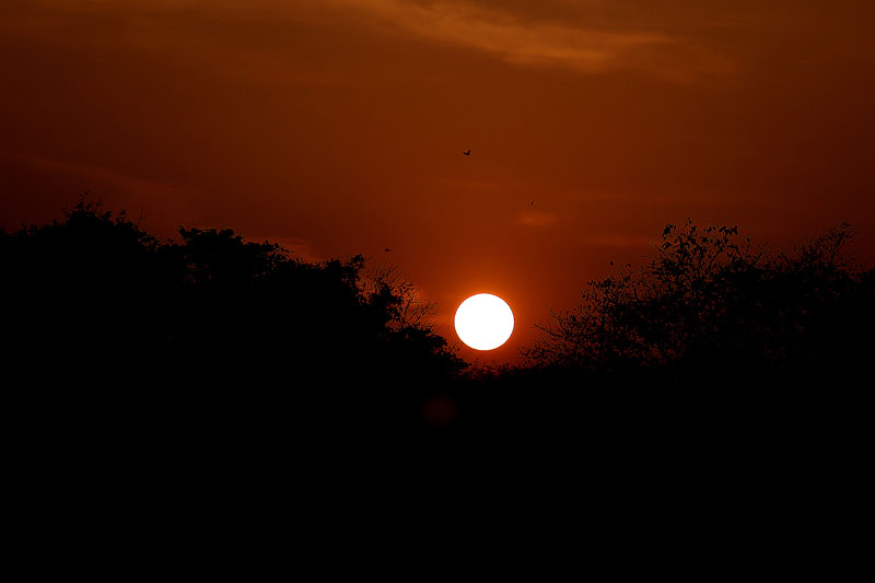 The first sunrise of the year 2017 seen from Chitwan National Park in Chitwan district on Sunday, January 1, 2017. Photo: RSS