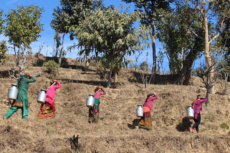 Women of Bunkot village in Gorkha district fetch drinking water to their place from a nearby resource, on Sunday, January 22, 2017. The village is reeling under an acute water crisis. Photo: RSS