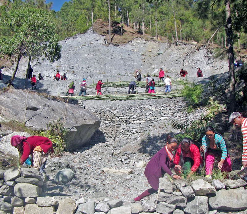 Locals use locally produced bamboos, brom grasses and other items to prevent landslides and soil erosions at Dhakam Pokhari of Beni Municipality, in Myagdi district, on Sunday, January 29, 2017. Photo: RSS