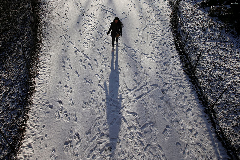A woman walks in a snow covered path at Central Park in New York, US, on January 6, 2017. Photo: Reuters