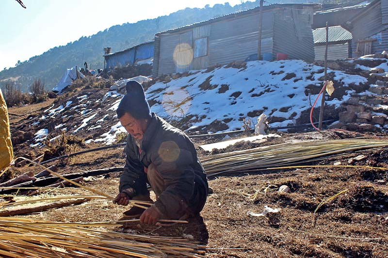 An elderly man weaves a wicker mat outside his house in Gupsipakha of Laprak in Gorkha district, on Wednesday, January 11, 2017. The settlement largely houses survivors of the 2015 earthquake. Photo: RSS