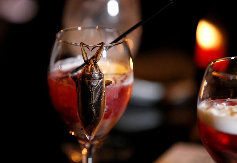 A water bug is seen on a glass of a cocktail with whipped cream containing juice of water bugs at a bar in downtown Tokyo, Japan, on February 12, 2017. Picture taken February 12, 2017. Photo: Reuters