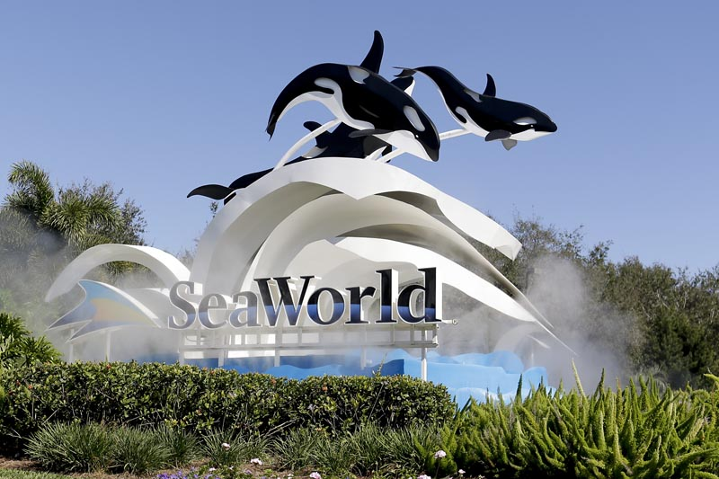 In this Tuesday, Jan. 31, 2017 photo, the entrance to Sea World is seen, in Orlando, Florida. Photo: AP