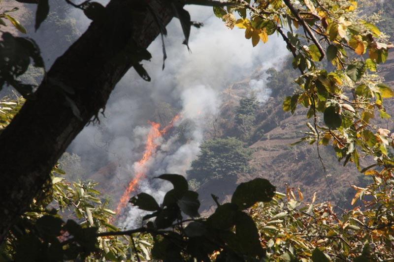 A wild fire spreads in a community forest in Chitwan district on Tuesday, March 14, 2017. Photo: RSS