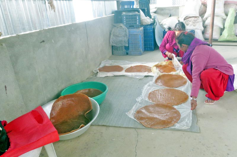Women are seen making candies from hog plums (Choerospondias axillaris) in Kavre on Friday, March 17, 2017. Photo: RSS