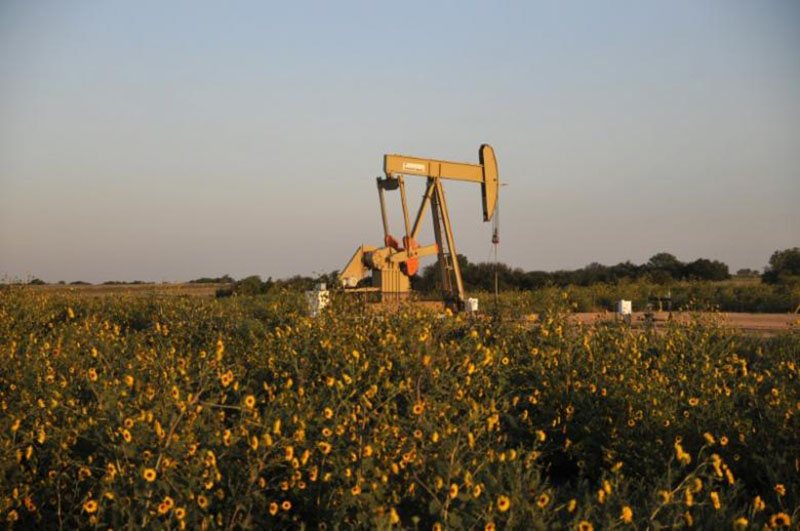 A pump jack operates at a well site leased by Devon Energy Production Company near Guthrie, Oklahoma, on  September 15, 2015. Photo: Reuters