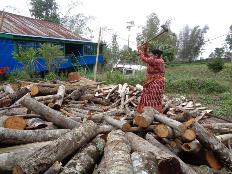 A woman is seen chopping wood in Ilam district, on Sunday, April 23, 2017. Photo: RSS