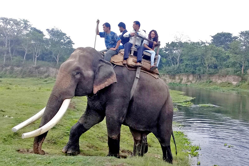 Tourists enjoy elephant ride in Chitwan National Park, of Chitwan district, on Friday, April 28, 2017. Photo: RSS