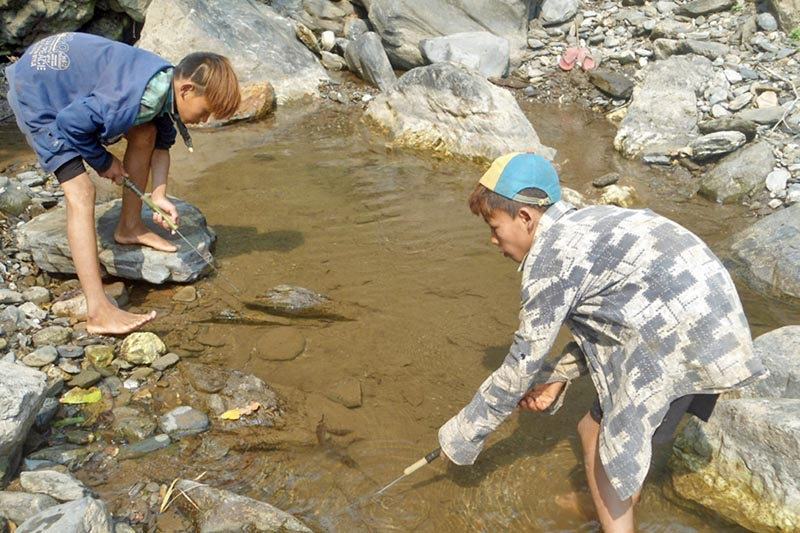 Youths are seen using a traditional tool for fishing  at a local stream in Siddhi gaun of Chitwan district, on Monday, April 24, 2017. Photo: RSS