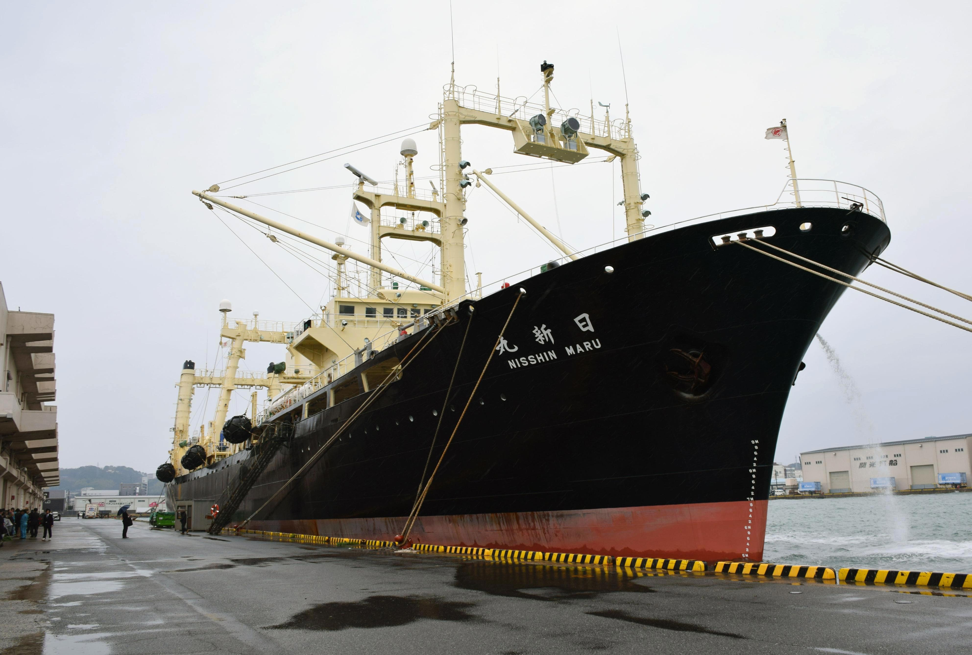 Japanese whaling vessel Nisshin Maru is anchored in Shimonoseki, western Japan, Friday, on March 31, 2017. Photo: AP
