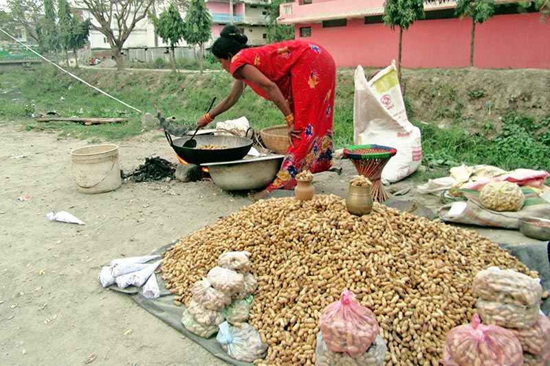A woman is seen heating up groundnuts to sell in Itahari of Sunsari district, on Wednesday, April 5, 2017. Photo: RSS