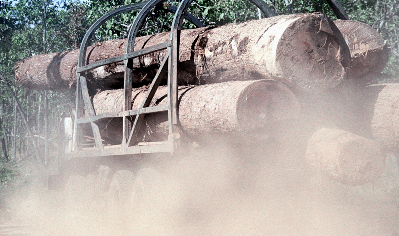 In this July 2002 file photo, dust flows from under the truck loaded with logs as it makes its way on a rural road in Preah Vihear province, north of Phnom Penh, Cambodia.  Photo: AP