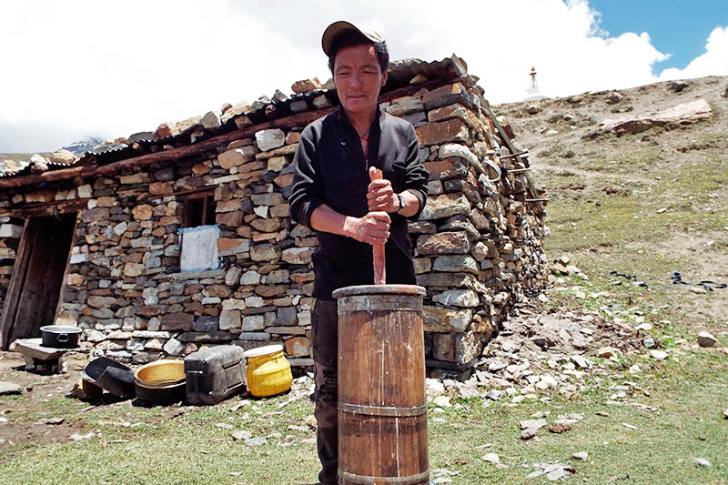 A yak herder is seen churning butter of yak milk at Narsyang Rural Municipality in Manang district, on Tuesday, June 27, 2017. Photo: RSS