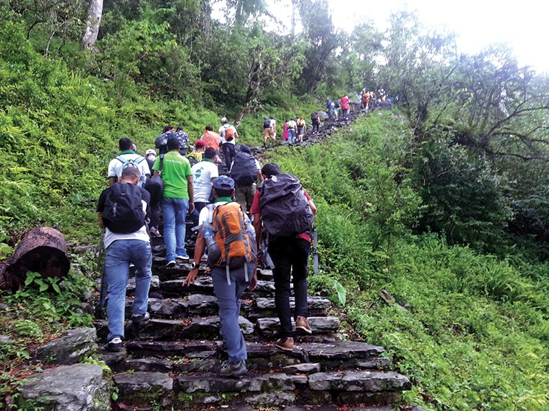 Tourism entrepreneurs trekking to Dangsing Mohoriya on the eve of 67th anniversary of the first ascent of Mt Annapurna, in Kaski, on Friday, June 2, 2017. Photo: THT