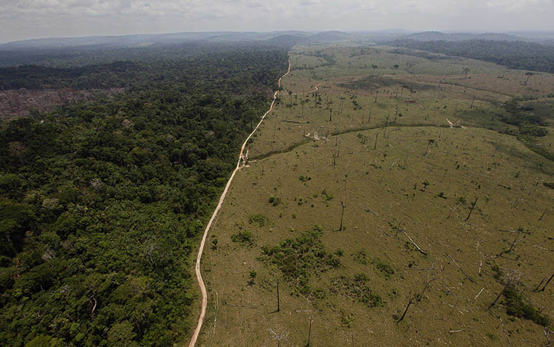 FILE - This Sept. 15, 2009 file photo shows a deforested area near Novo Progresso in Brazil's northern state of Para.  Photo: AP