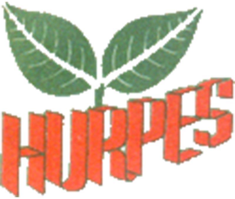 Human Rights and Peace Society Logo