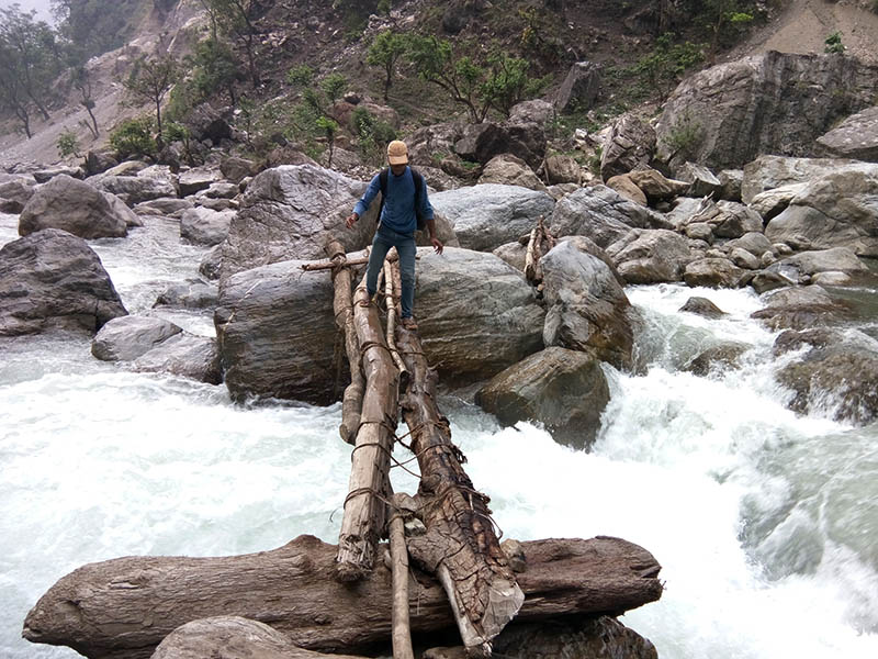 A man uses a wooden makeshift bridge to cross Nalsyaugad River in Jajarkot district, on Thursday, June 8, 2017. Photo: RSS