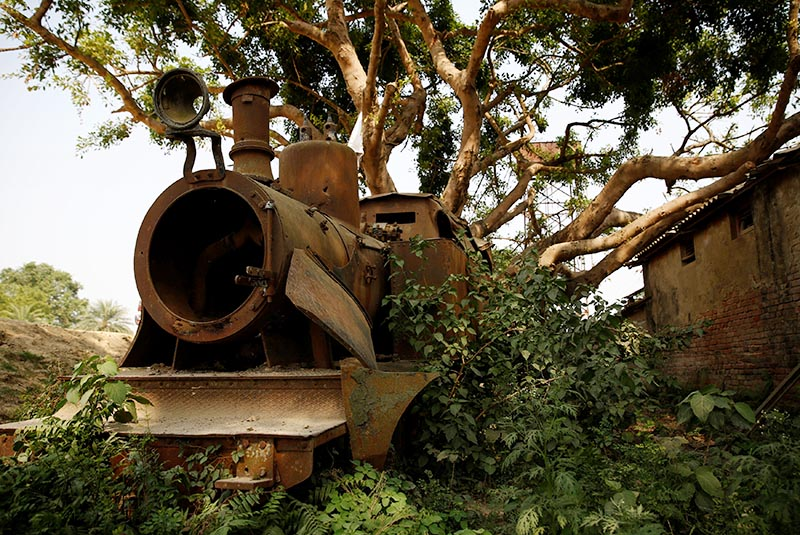 Plants grow on the abandoned train at the workshop of Nepal Railways Corporation Ltd, in Janakpur, Nepal, on June 4, 2017. Photo: Reuters