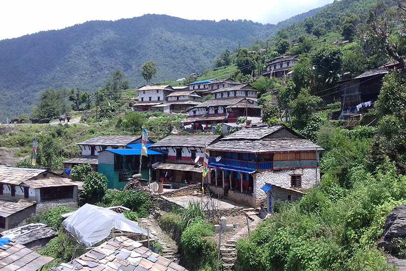A view of traditional houses at Mohoriya village in Dangsingh of Annapurna Rural Municipality in Kaski district, as captured on Sunday, June 4, 2017. Photo: RSS
