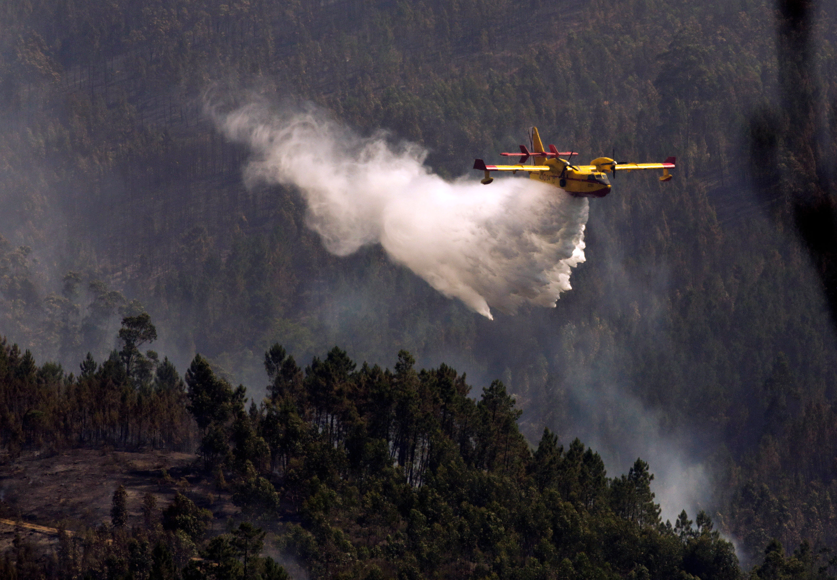 A firefighting plane dumps water on a forest fire in Alto da Louriceira, Portugal,  June 21, 2017. Photo: Reuters