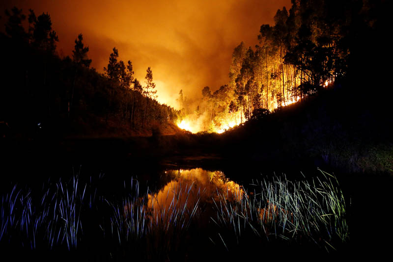A forest fire is seen near Bouca, in central Portugal, on June 18, 2017. Photo: Reuters