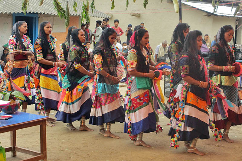Artists clad in traditional Tharu dresses perform Holi dance at Gokulpur in Kanchanpur district, on Wednesday, June 7, 2017. Photo: RSS