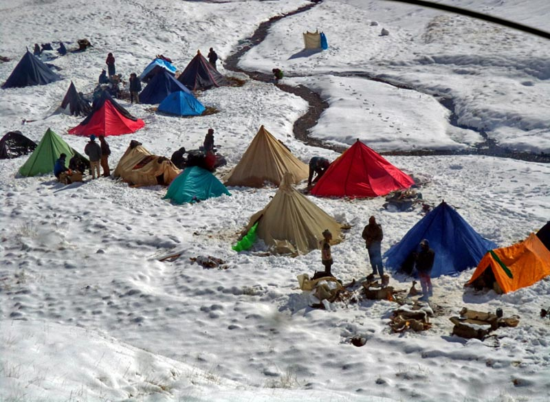 A view of tents pitched by yarsagumba collectors on a snowy field at Bhokpa Patan in Dolpa district, on Monday, June 5, 2017. Photo: RSS